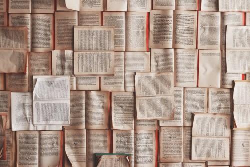 In deel één van onze blogserie kon je al lezen wat het nut van literatuur- en bronnenonderzoek is. In dit deel gaan we in op hoe je het literatuur- en bronnenonderzoek kunt uitvoeren.